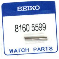 Authentic Seiko 81605599 watch band